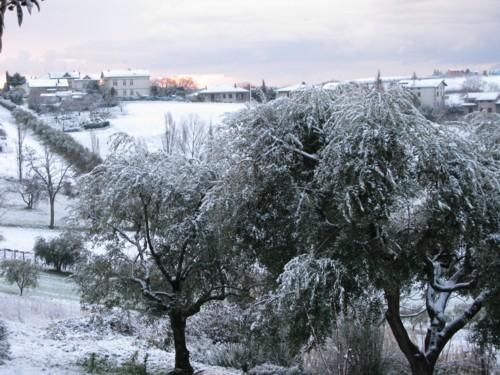 snow in san giorgio