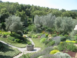 reinhardt garden