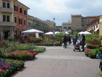 cattolica flower festival