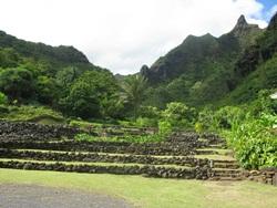 limahuli gardens