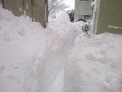 snow in sg feb 12